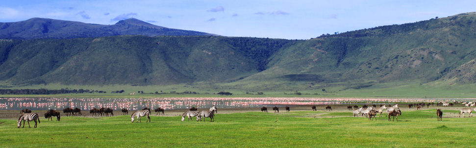 ngorongoro conservation area authority tourism essay Read this essay on is-it strategy is/it strategy use at ngorongoro conservation area authority 0 general perspective of tourism sector in tanzania 1 11.