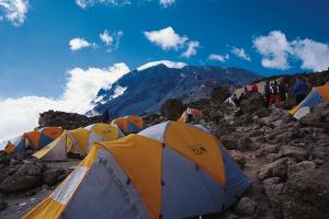 Climb Kili Via Tour Lemosho Route (8 Days) Packages