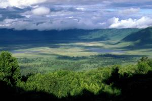 Ngorongoro Crater Day Tour Packages