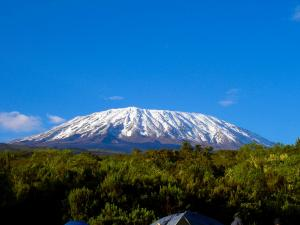 Mount Kilimanjaro Climbing Tour Packages